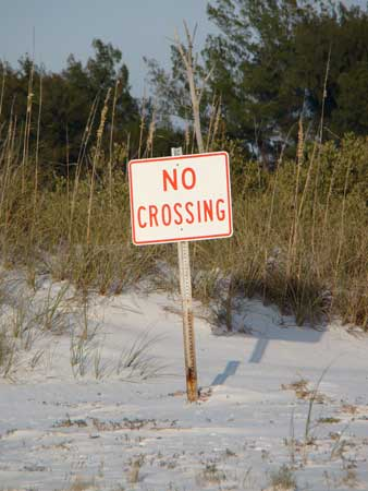 no-crossing
